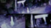 WIX 「香取神社の狛犬」 2014(1).png