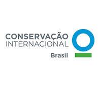 CI Brasil