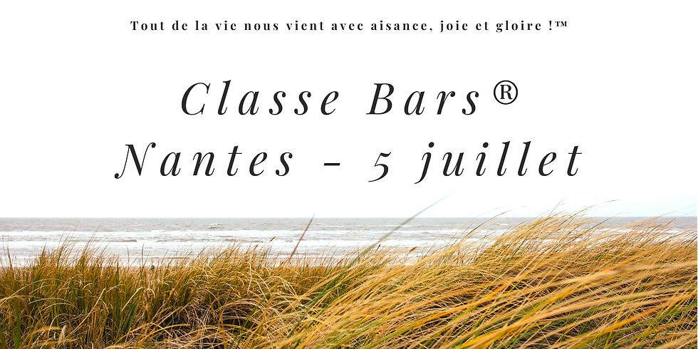 Formation Access Bars® Nantes
