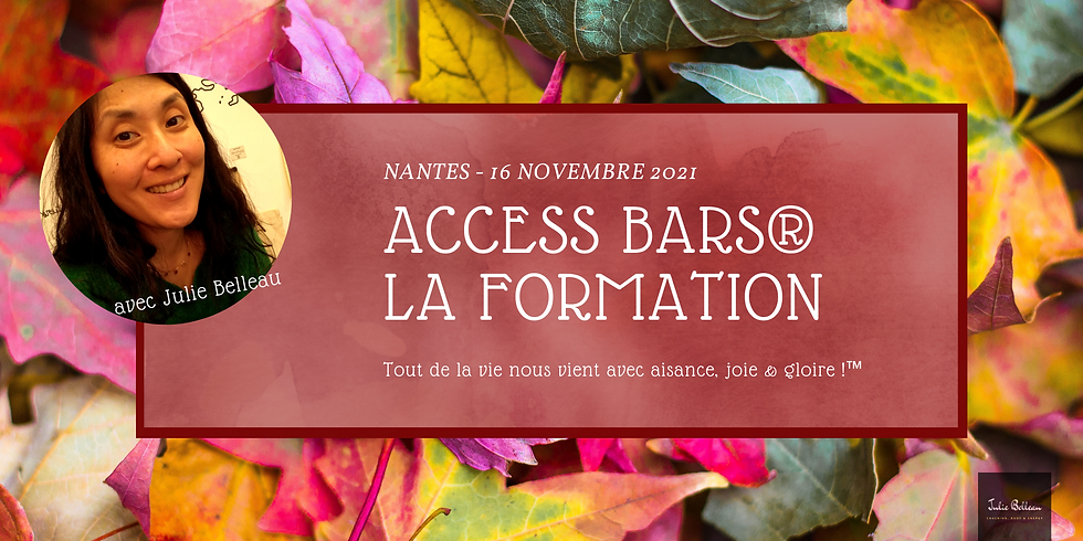 Formation Access Bars® Novembre