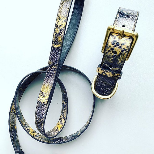 hondenhalsband met riem