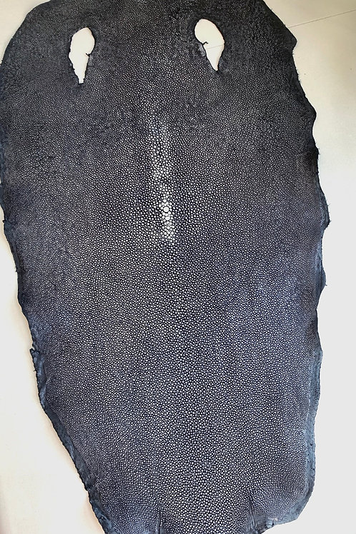 visleder - gepolijst