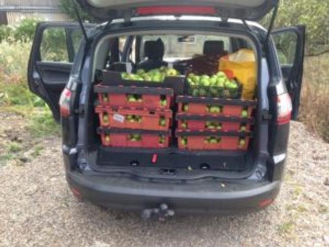 car-apples