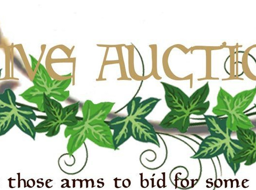 Summer Ball Auctions