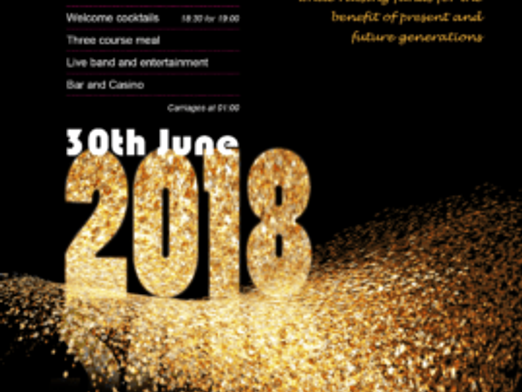 CRANBROOK SCHOOL QUINCENTENARY SUMMER BALL