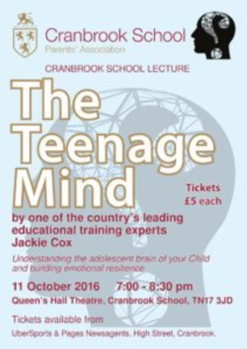 events_teenage_mind_poster