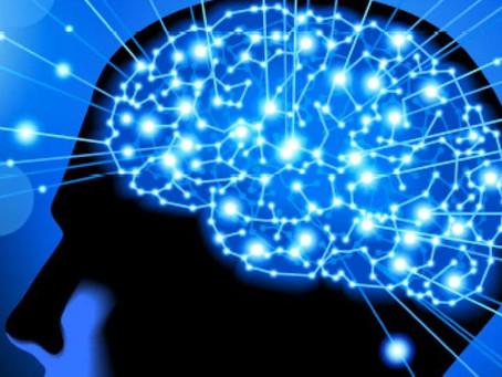 The Neuro-Ninja Toolkit Seminar – Dates and Booking