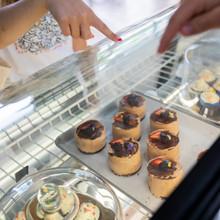 The Spatula Bakery & Cafe Bakery
