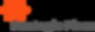 strategicPiece_logo.png