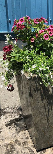 Don't forget about planters this summer!