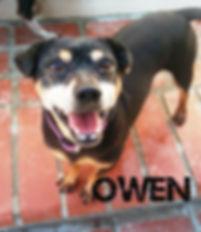 Owen happy w name.jpg