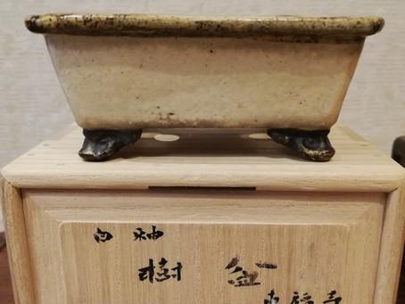 東福寺 白泥白釉掛外縁雲足長方