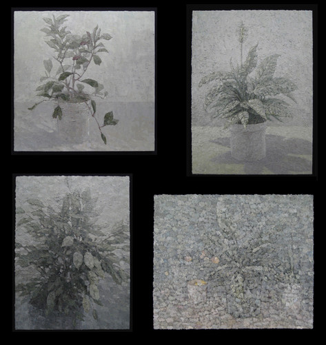 Past Plant Paintings