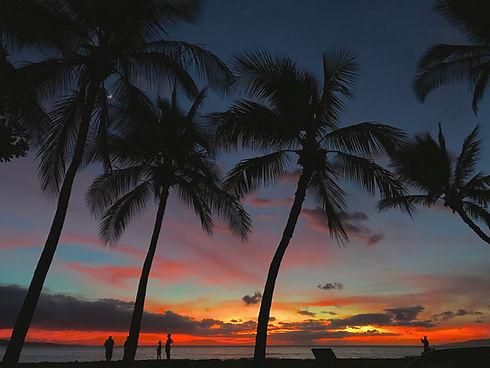 hawaii sunset.jpg