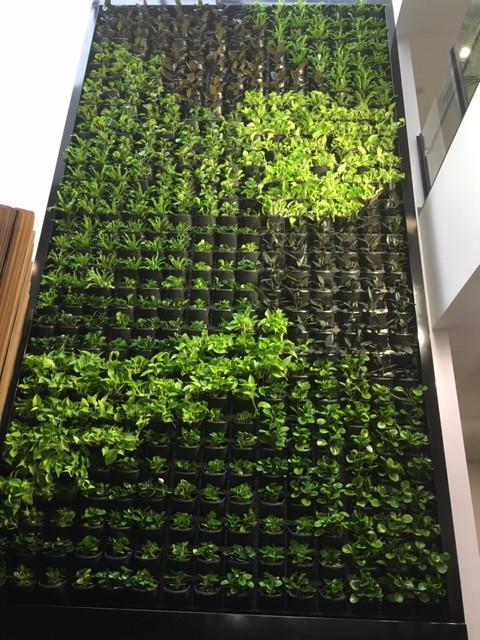 Plant Rack 6 metres
