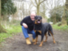 dog walker, pet taxi, small animals banstead