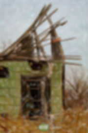 shackgreen0127.jpg