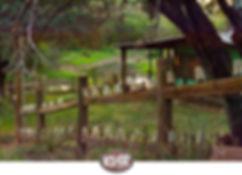 lakehouse0113joe.jpg