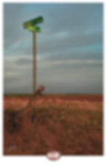 joeroad0044klsr 3.jpg