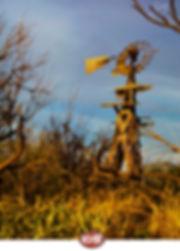 windmill0375watercropjoe.jpg