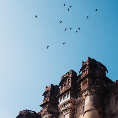Jodhpur (11 of 117).jpg