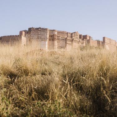 Jodhpur (107 of 117).jpg