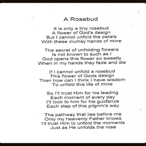 A Rosebud