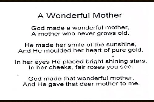 A Wonderful Mother