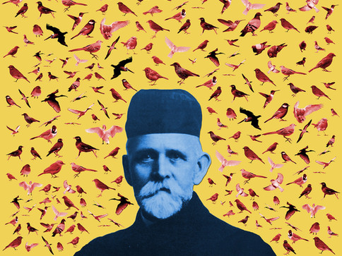 Fugle-Mortensen