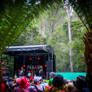A Festival Called Panama - Crowd-26.jpg