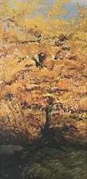 Oak Tree Diane.jpeg