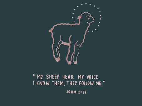 His sheep follow Him - Image 2, week 3, Alaina