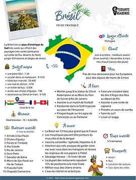 EV Fiche pratique Brésil.png
