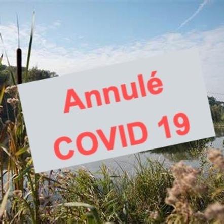 Challenge 3 : Le Domaine de Coyolles
