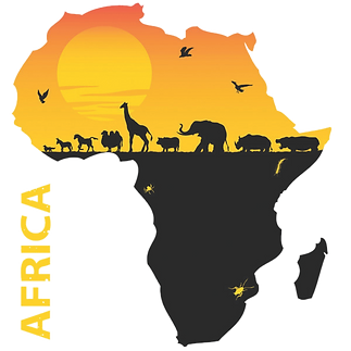 africa%20photo_edited.png