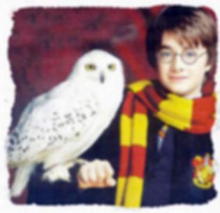 harry_potter_owl.JPG