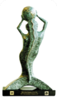 award gm.png