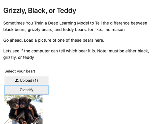 Cuddly Bear Identifier:  My First Published Machine Learning Model