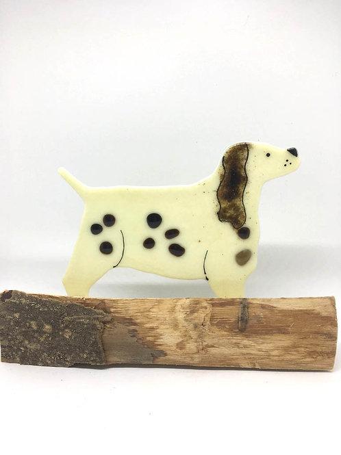 Spaniel On Driftwood