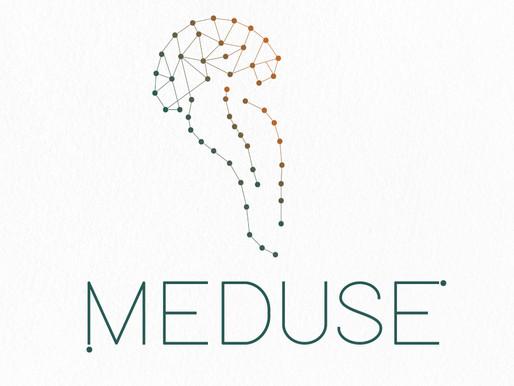 A Meduse