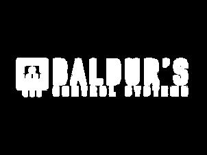 Baldur's Control System
