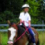 YMCA HORSE.jpg