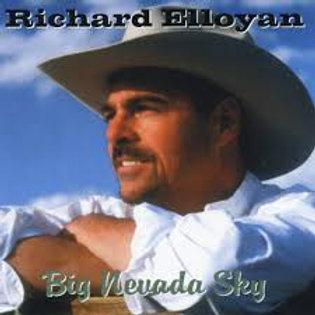 Big Nevada Sky