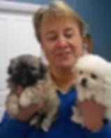 Ann Luke the vet gunnedah pet vet.png