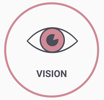 VISION.PNG