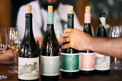 Wine-Thief-08_nett.jpg