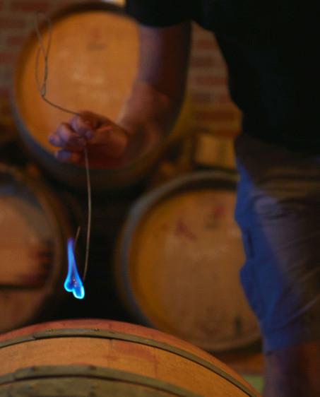 rall-wines-patenning_h-nett.jpg