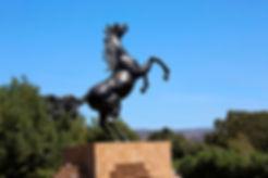 black-stallion-1.jpg