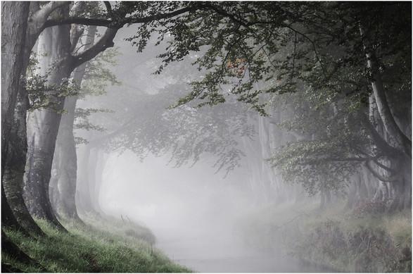 'Morning Peace' by Mark Winning, CB Camera Club