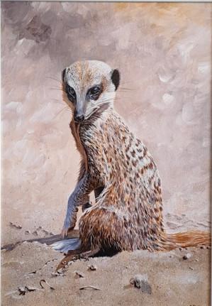 Mister Meerkat